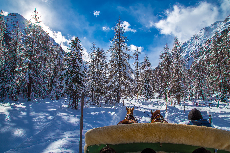 Passeio de carruagem em St. Moritz